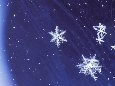 针织雪花矢量图
